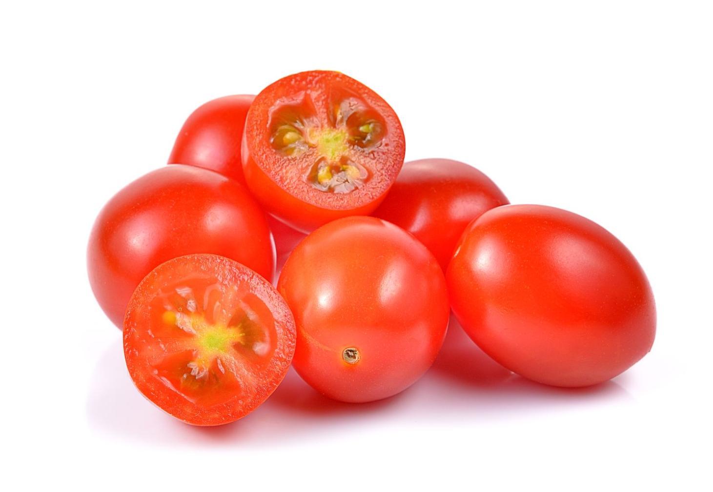 Tomato Hybrid